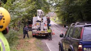 A big tree surgery job alongside a major trunk road