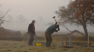 Tree planting time in the park