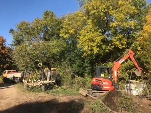 The woodyard clean up