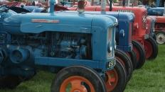 DSCF8553